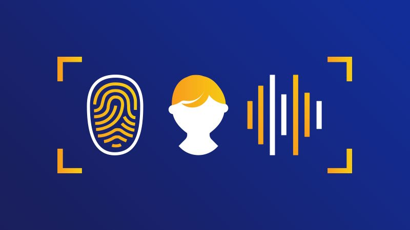 Fingerprint, person and electric charge: Illustration of relationship.