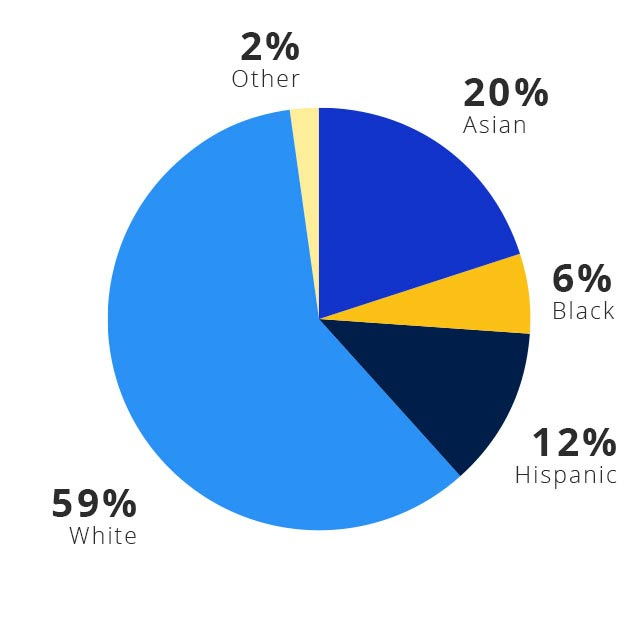 A pie chart shows the ethnicities of Visa's United States leadership: 63% White. 19% Asian. 12% Hispanic. 4% Black. 2% Other.