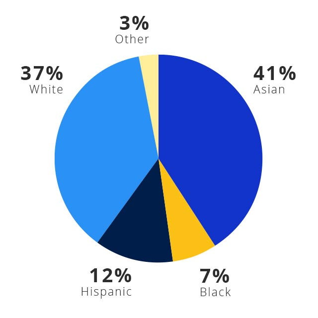 A pie chart shows the ethnicities in Visa's U.S. workforce. 42% Asian. 38% white. 11% Hispanic. 6% Black. 3% Other.