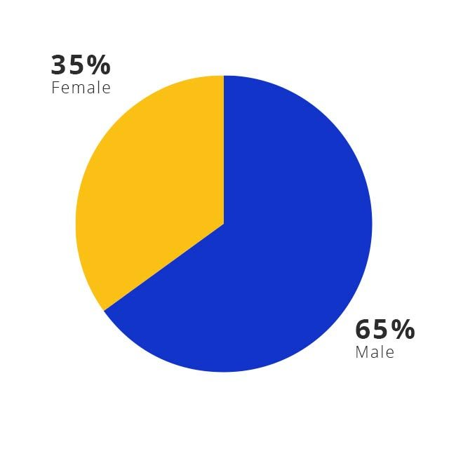 A pie chart shows that Visa's global leadership is 66% male and 34% female.