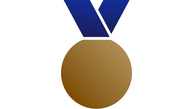 Bronze Metal